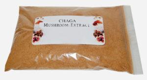 Chaga Pilz Extrakt